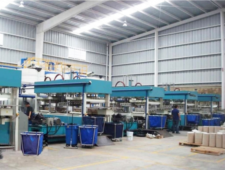 Pulp packing equipment (termoforming)